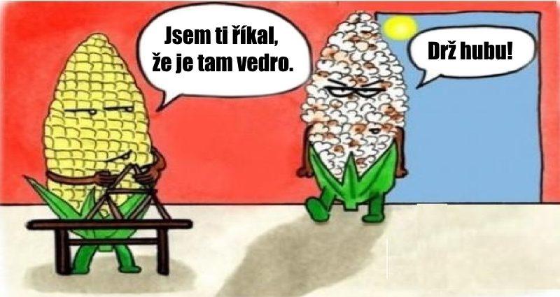 vtipný obrázek o kukuřicích